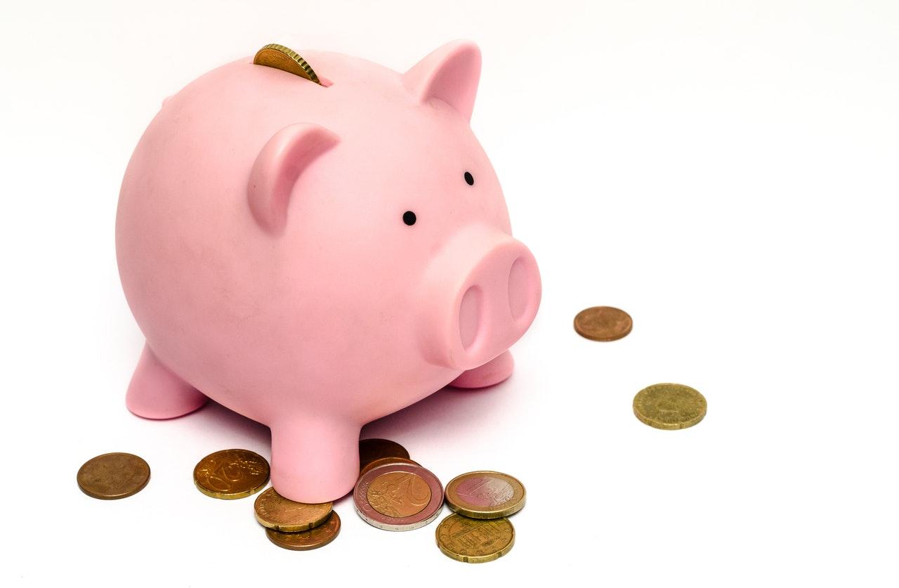 What is Non-convertible debentures